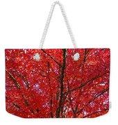 Colorful Red Orange Fall Tree Leaves Art Prints Autumn Weekender Tote Bag