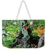 Colorful Stump Weekender Tote Bag