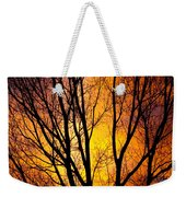 Colorful Tree Silhouettes Weekender Tote Bag
