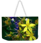 Colorful Wonder Weekender Tote Bag