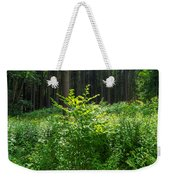 Colors Of A Forest In Vogelsberg Weekender Tote Bag