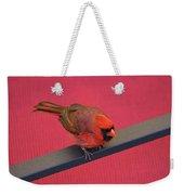 Colour Me Red - Northern Cardinal - Cardinalis Cardinalis Weekender Tote Bag