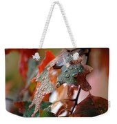Colours Of Fall I Weekender Tote Bag