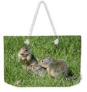 Columbian Ground Squirrels Weekender Tote Bag