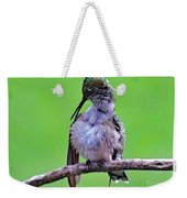 Combing His Feathers - Ruby-throated Hummingbird Weekender Tote Bag