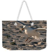 Coming In For A Landing - Jersey Shore Weekender Tote Bag
