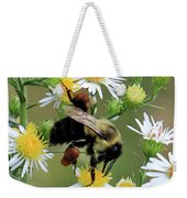 Common Eastern Bumblebee  Weekender Tote Bag