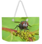 Common Fly Licking Up Aphid Nectar     May         Indiana    Weekender Tote Bag