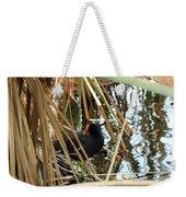Common Gallinule Weekender Tote Bag