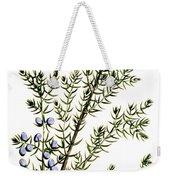 Common Juniper Alchemy Plant Weekender Tote Bag