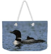 Common Loon Gavia Immer, With Baby Weekender Tote Bag