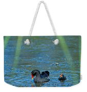 Common Moorhen And Her Baby Weekender Tote Bag