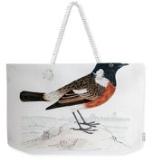 Common Stonechat Illustration Weekender Tote Bag