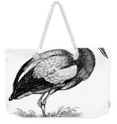 Common Stork Weekender Tote Bag