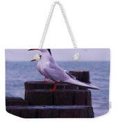 Common Tern Sterna Hirundo Weekender Tote Bag
