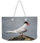 Common Tern Weekender Tote Bag
