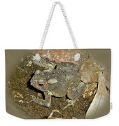 Common Toad - Bufo Americanus Weekender Tote Bag