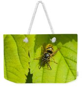 Common Wasp Weekender Tote Bag