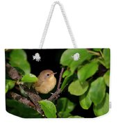 Common Yellowthroat Warbler Weekender Tote Bag