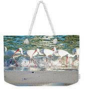 Companions On Coquina Beach Weekender Tote Bag