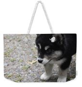 Concern On The Face Of An Alusky Puppy Weekender Tote Bag