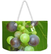 Concord Grapes On The Vine Weekender Tote Bag
