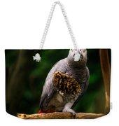 Congo African Grey Parrot Weekender Tote Bag