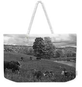Congregating Cows. Jenne Farm Cow Reading Vermont Black And White Weekender Tote Bag