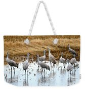 Congregating Sandhill Cranes Weekender Tote Bag