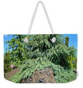 Conifer Tree Art Prints Pine Trees Botanical Nature Baslee Troutman Weekender Tote Bag