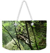 Conkle's Hollow Stone Arch Weekender Tote Bag
