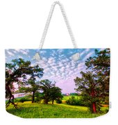 Conley Road Meadow, Oaks, Barn, Spring  Weekender Tote Bag