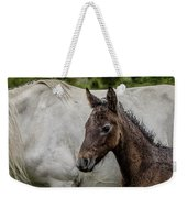 Connemara Foal Weekender Tote Bag