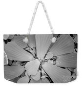 Conservatory Nature In Black And White 1 Weekender Tote Bag
