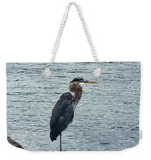 Contemplating A Swim In The Niagara Weekender Tote Bag