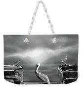 Contemplating The Pelican Weekender Tote Bag