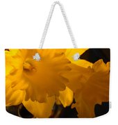 Contemporary Flower Artwork 10 Daffodil Flowers Evening Glow Weekender Tote Bag