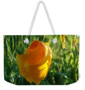 Contemporary Orange Poppy Flower Unfolding In Sunlight 10 Baslee Troutman Weekender Tote Bag