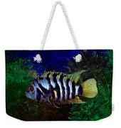 Convict Cichlid Fish Weekender Tote Bag