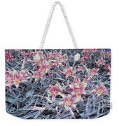 Cool Sunset Field Of Tiger Lillies Weekender Tote Bag