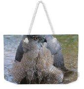 Cooper's Hawk In Stream Weekender Tote Bag