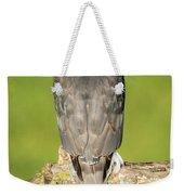 Cooper's Hawk In The Backyard Weekender Tote Bag