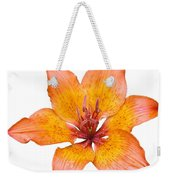 Coral Colored Lily Isolated On White Weekender Tote Bag