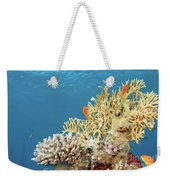 Coral Reef Eco System Weekender Tote Bag