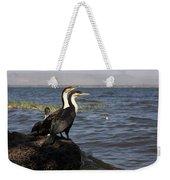 Great Rift Cormorants Weekender Tote Bag