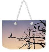 Cormorant Sunset Weekender Tote Bag