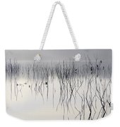 Cormorants Waiting For The Night Weekender Tote Bag