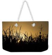 Corn Field Sunrise Weekender Tote Bag