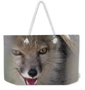 Corsac Fox- Vulpes Corsac 01 Weekender Tote Bag