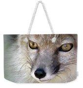 Corsac Fox- Vulpes Corsac 02 Weekender Tote Bag